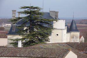 Cherves-Richemont - Fontaulière (21 novembre 2017)