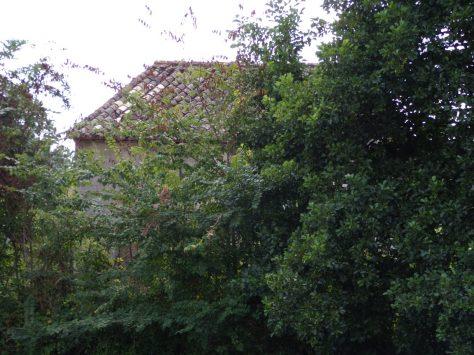 Saint-Simon - Une maisonnette de gabarrier (18 août 2016)